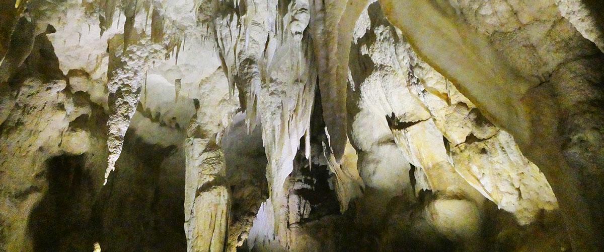 Aranui Caves, Waitomo
