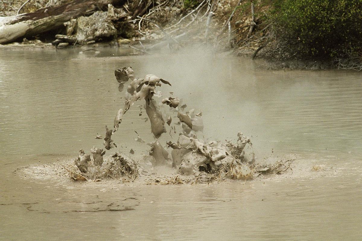 NZ Mud! (Rotorua region)